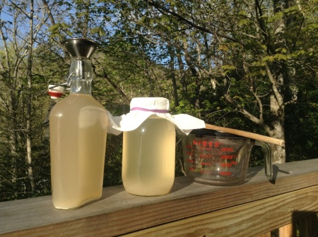 Tools of the Water Kefir Trade: Flip-top bottle, funnel, recycled jar, paper towel & rubber band, strainer, pyrex, wooden spoon.