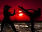 martial-arts-291049_960_720